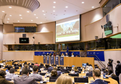 EU parliament hearing: five things to watch on Brexit rights
